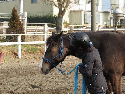 馬にホスピタリティーを捧げる