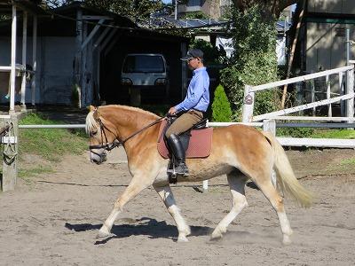 馬と真剣に向き合うこと