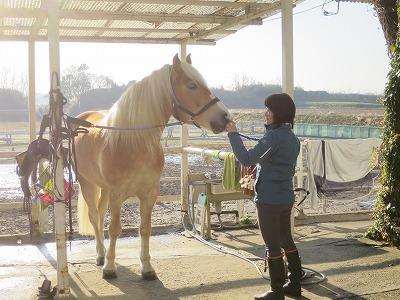 馬とお互いに気持ちいい関係