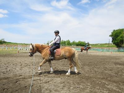馬と一緒にハッピー乗馬