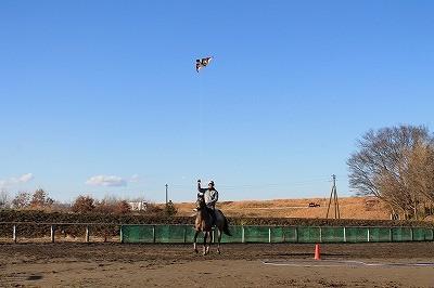 馬と凧揚げ