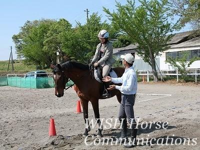 体験乗馬の指導風景