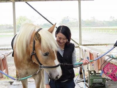 Try Wish! 今日の体験乗馬