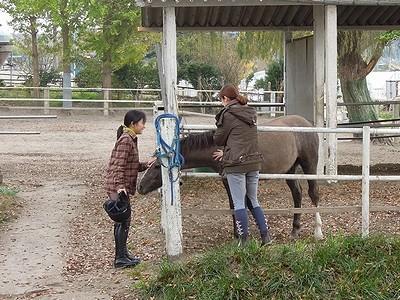 体験乗馬から、一回一回を大切に。