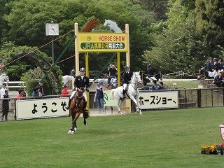 馬事公苑ホースショー