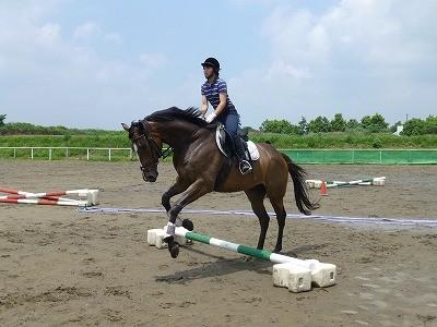 楽しい乗馬でリラックス!