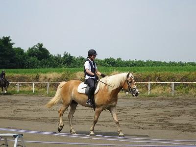馬とハッピー