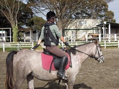 馬のお尻をポムポムしよう