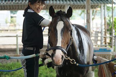 馬に好かれるには、当たり前のことをしっかりやること