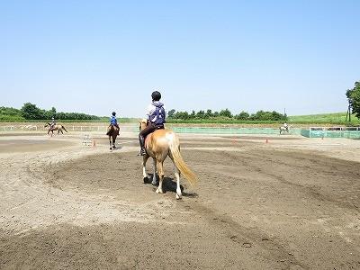馬とハッピーコミュニケーション体験