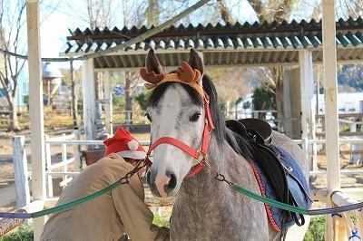 馬と一緒にプチコスプレ