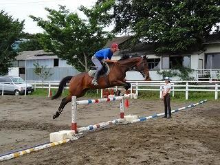 障害馬術憧れの乗馬