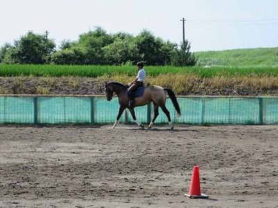 初夏の乗馬