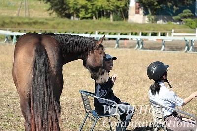 乗馬の楽園