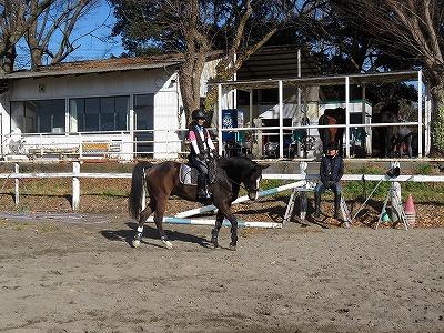 馬と語らう静かな楽しみ