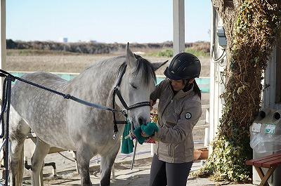 その馬が本当にハッピーか、感情抜きで見極める必要があります