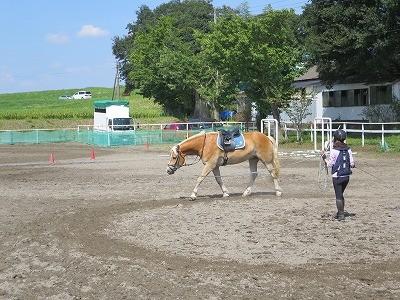 整えながら馬に乗る