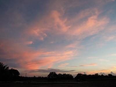 乗馬クラブのきれいな夕焼け