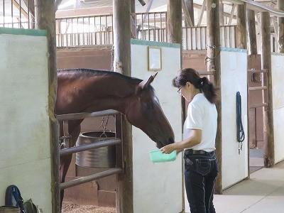 馬は梨も大好きです