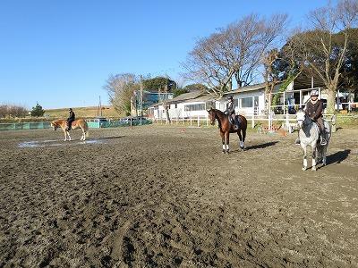 馬とグランドワーク