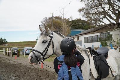馬のたてがみ編み