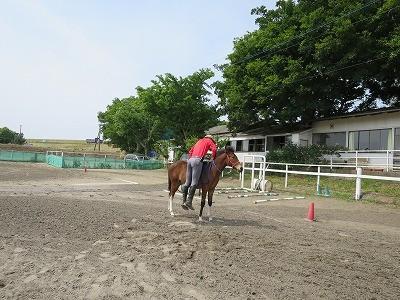新馬調教 乗っかって重みを学習