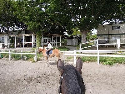 馬に乗ったままゲートを開け閉め
