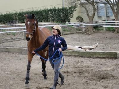 馬と気持ちを合わせる