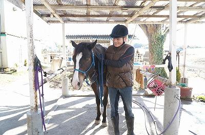 馬語習得は愛だよ!