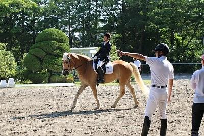 馬術競技会風景 出番前のひとコマ