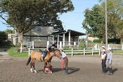 馬と愛情を伝え合う