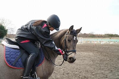 何をいつ与えたらお行儀のよい馬になるかな