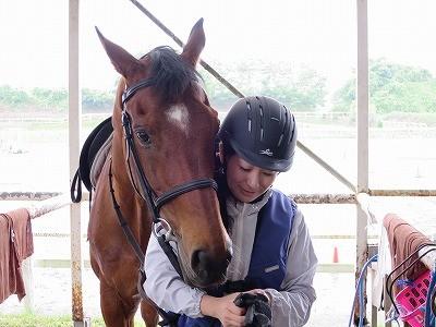 馬と人仲良しの風景