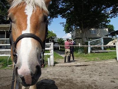 乗馬体験教室