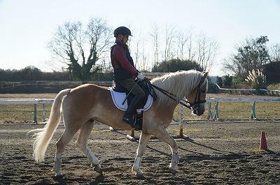乗馬の鍵は共感能力