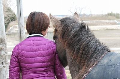 馬に好かれよう