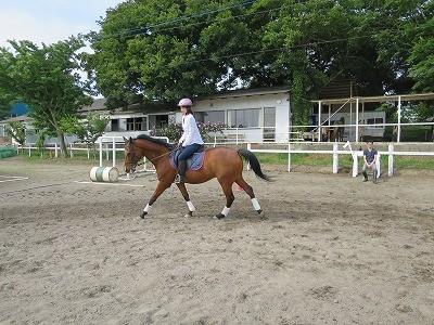 馬との大切な時間
