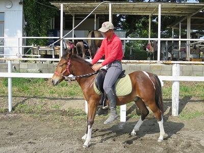 新馬調教 必要なのは観察と判断