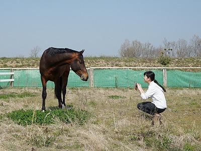 愛情が満たされる乗馬クラブ