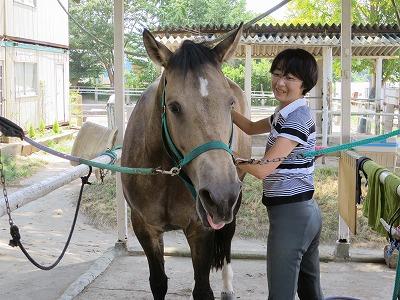 馬が喜ぶ顔