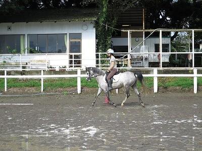雨上がりの乗馬