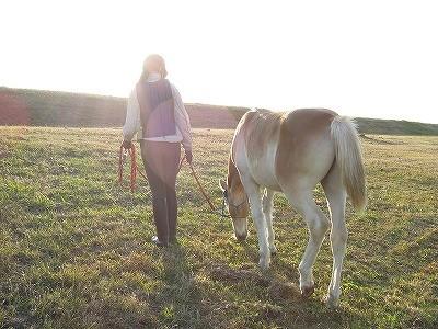 馬と一緒の素敵な風景