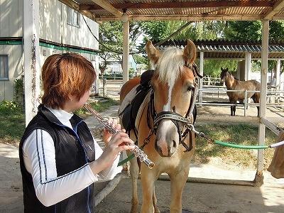 馬と一緒にフルートを聞きました