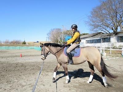 馬と一緒って楽しい