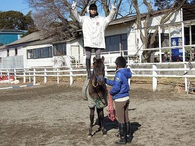 馬と触れ合える乗馬クラブ