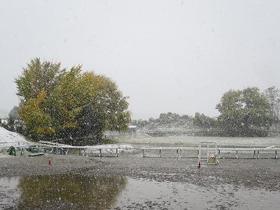 11月の大雪