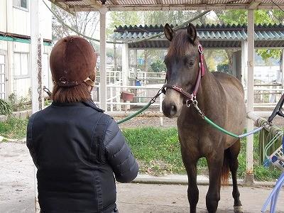 馬との絆が写った写真