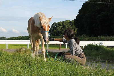 里山へ馬とお散歩