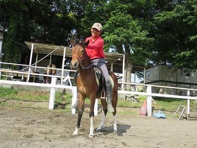 新馬調教 初めて人を乗せた馬
