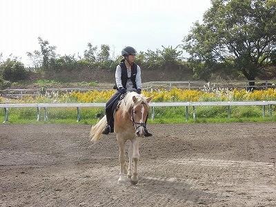 馬は鏡の意味